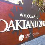 oak-zoo-closeup-1-square