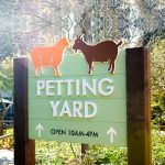 Post sign for the petting yard at Oakland Zoo