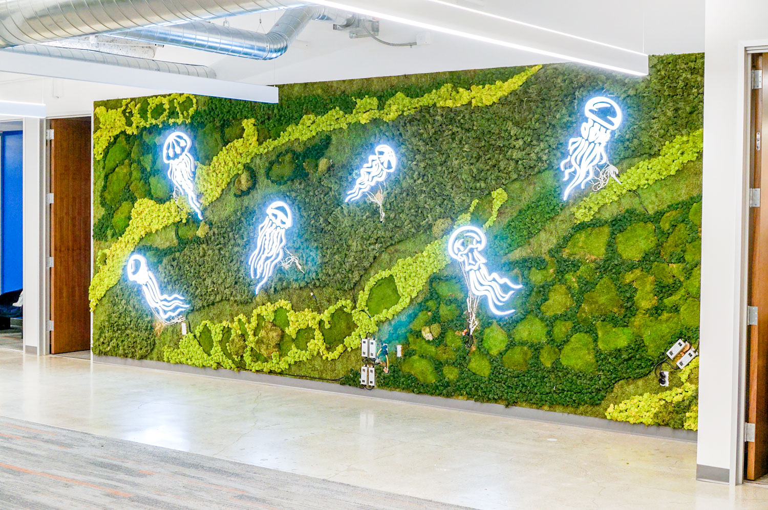 Illuminated, neon-style jellyfish on moss wall at the office of Benchling, a San Francisco based company working on a unified platform to accelerate, measure, and forecast R&D from discovery through bioprocessing.