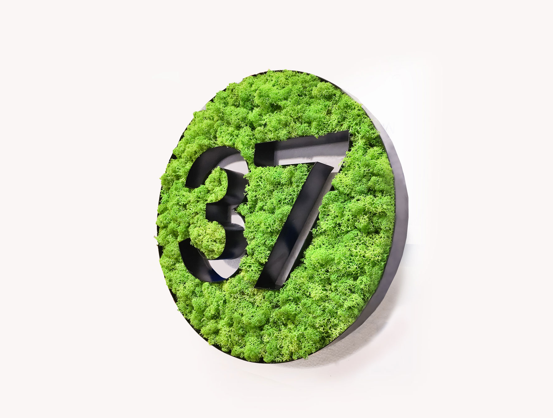 Two-toned, moss filled letters for Science37, a mobile technology and clinical trial company.
