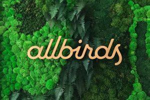 allbirds moss sign