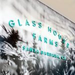 Teal letters on black and white photo mural for the retail display for Glass House Farms, a cannabis nursery in Santa Barbara, CA.