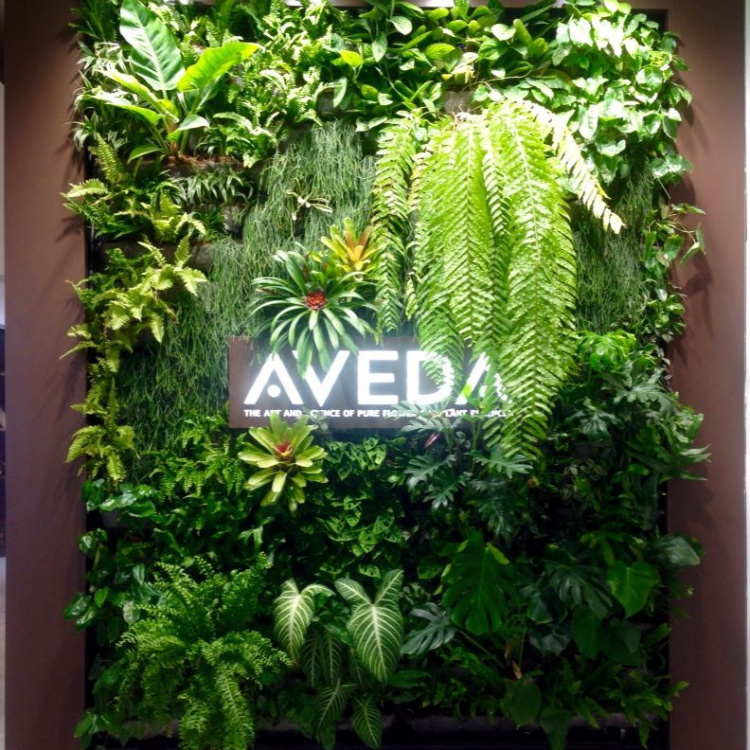 Illuminated sign on living wall at Aveda