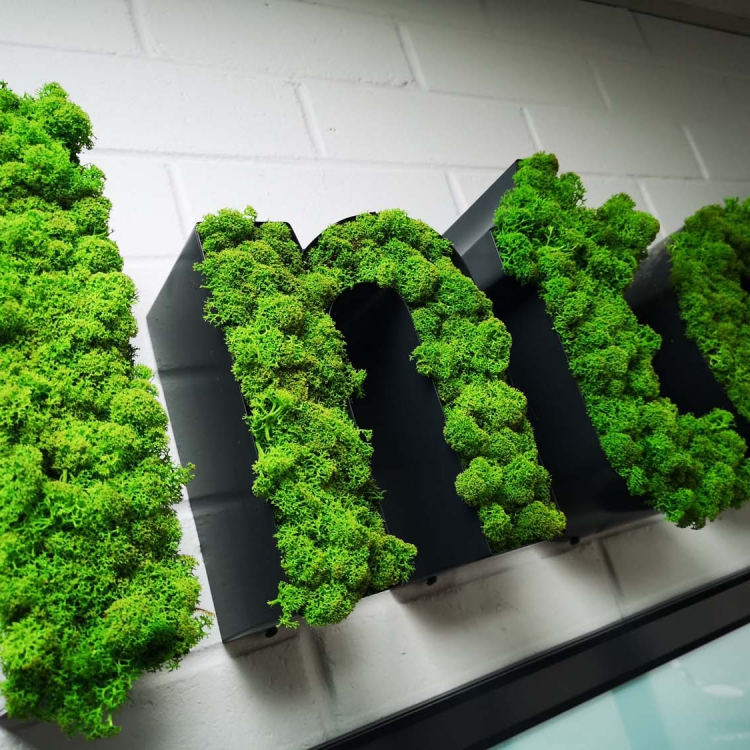 Moss filled black channel letter