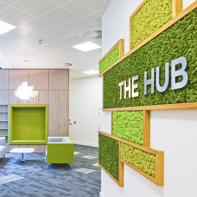 Boxed moss with silver logo on white wall for The Hub