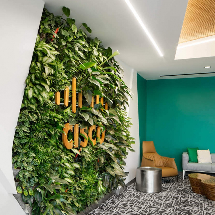 living wall at cisco office
