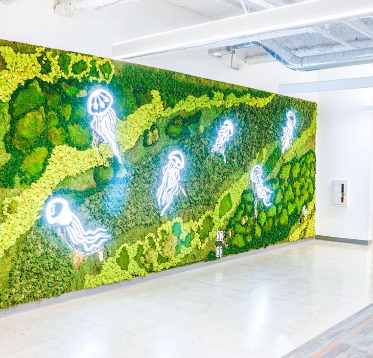 Benchling – Jellyfish Wall