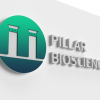 pillar-mock2