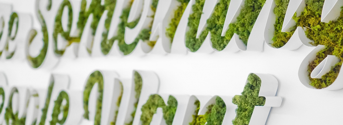 20 Moss Signs to Make You Green with Envy